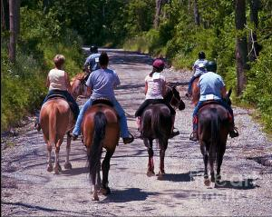 Trail Ride....